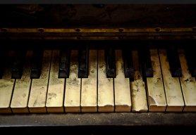 Harmonico