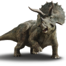Triceratops cofrade